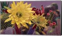 Cindy's Garden Fine Art Print