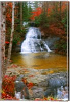 Water Fall Fine Art Print