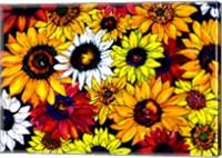 Sunflower Mix Fine Art Print