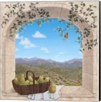 Arizona Serenity Fine Art Print
