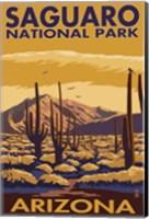 Saguaro National Park Arizona Fine Art Print