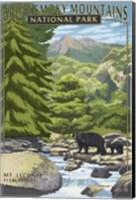 Great Smoky Mountains Park Fine Art Print