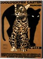 Zoo Big Cats Fine Art Print