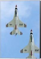 United States Air Force Demonstration Team Thunderbirds Fine Art Print