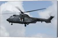 Eurocopter AS532 Cougar? Fine Art Print