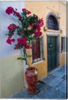 Bougenvillia Vine in Pot, Oia, Santorini, Greece Fine Art Print