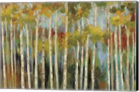 Young Forest III Fine Art Print