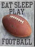 Eat Sleep Play Football Fine Art Print