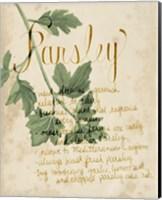 Herb Study V Fine Art Print