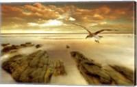 Soft Sunrise on the Beach 4 Fine Art Print