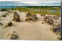Sandy Beach Fine Art Print