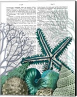 Starfish Under the Sea Fine Art Print