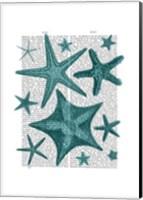 Green Starfish Collection Fine Art Print
