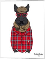 Scottish Terrier In Pin Plaid Shirt Fine Art Print