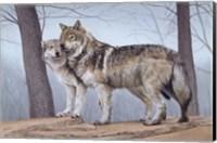 Two Wolves Fine Art Print