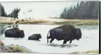 Spirit Of Yellowstone Fine Art Print