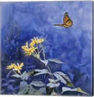 Monarch Butterfly Fine Art Print