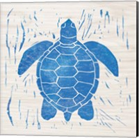 Sea Creature Turtle Blue Fine Art Print