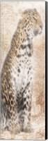 African Traveling  Animals Fine Art Print