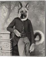 Hans The German Shepherd Fine Art Print