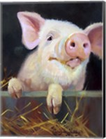 Farm Club II Fine Art Print