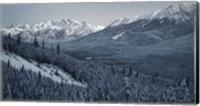 Winter Valley- Elk Fine Art Print
