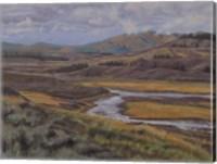 Hayden Valley Fine Art Print