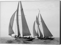 Sailboats Race during Yacht Club Cruise Fine Art Print