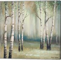 Late September Birch I Fine Art Print