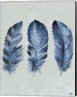 Indigo Blue Feathers II Fine Art Print