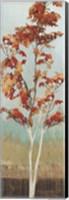 Maple Tree III Fine Art Print