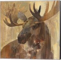 Into the Wild II Fine Art Print