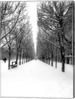 The Tuileries Garden under the Snow, Paris Fine Art Print