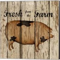 Farm Fresh Pork Fine Art Print