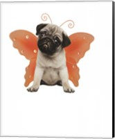 Wings - Pug Fine Art Print