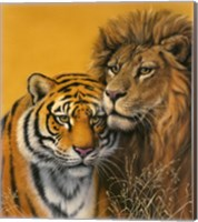 Lion & Tiger Fine Art Print