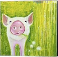 Pig Fine Art Print