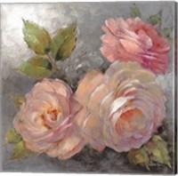 Roses on Gray II Fine Art Print
