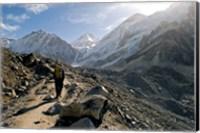 A trekker on the Everest Base Camp Trail, Nepal Fine Art Print