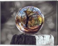 Pop of Color Glass Sphere Fine Art Print