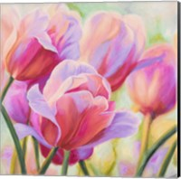 Tulips in Wonderland I Fine Art Print