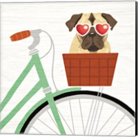 Beach Bums Pug Bicycle I Fine Art Print