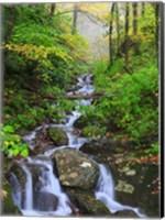 Small Waterfalls 2 Fine Art Print
