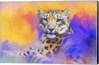 Colorful Expressions Snow Leopard Fine Art Print