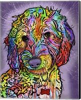 Sweet Poodle Fine Art Print