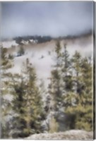 Winter Impressions In Colorado 3 Fine Art Print