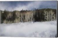 Winter Impressions In Colorado 11 Fine Art Print
