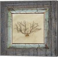 Gypsy Sea Framed 3 Fine Art Print