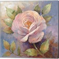 Roses on Blue IV Crop Fine Art Print