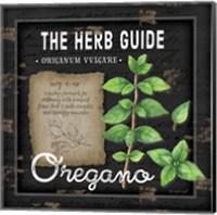 Herb Guide Oregano Fine Art Print